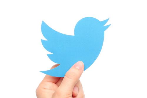 Twitter logo held aloft