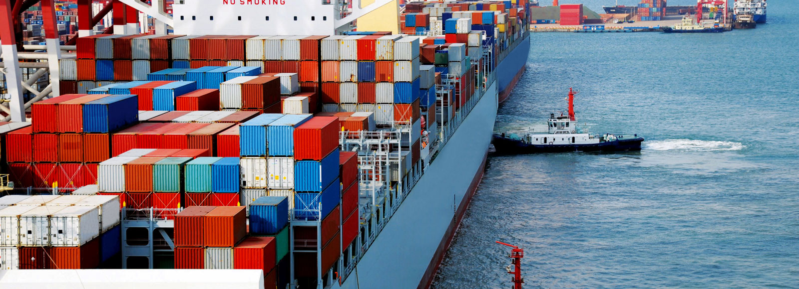 Container ship at a berthing port