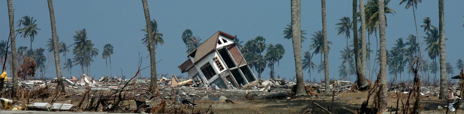 Landscape destroyed by a tsunami