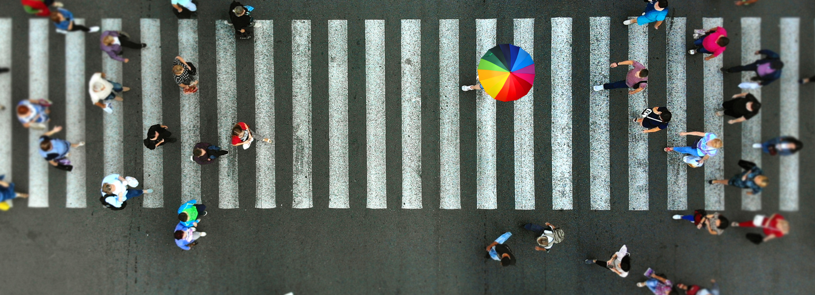 Aerial view of people on a zebra crossing and one person using a rainbow umbrella