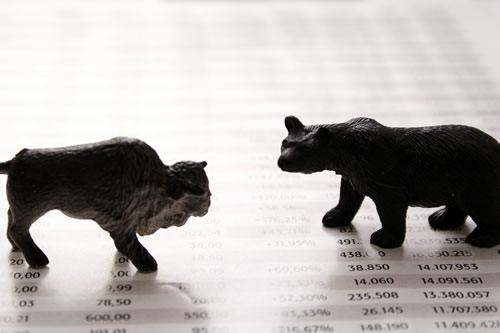 Stock Market Bull and Bear