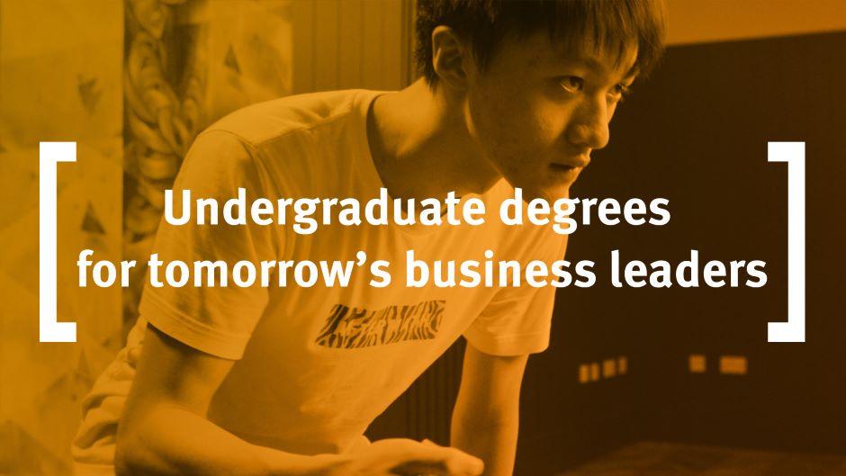 Undergraduate degrees at Cass Business School