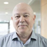 Portrait of Professor Vladimir Kaishev